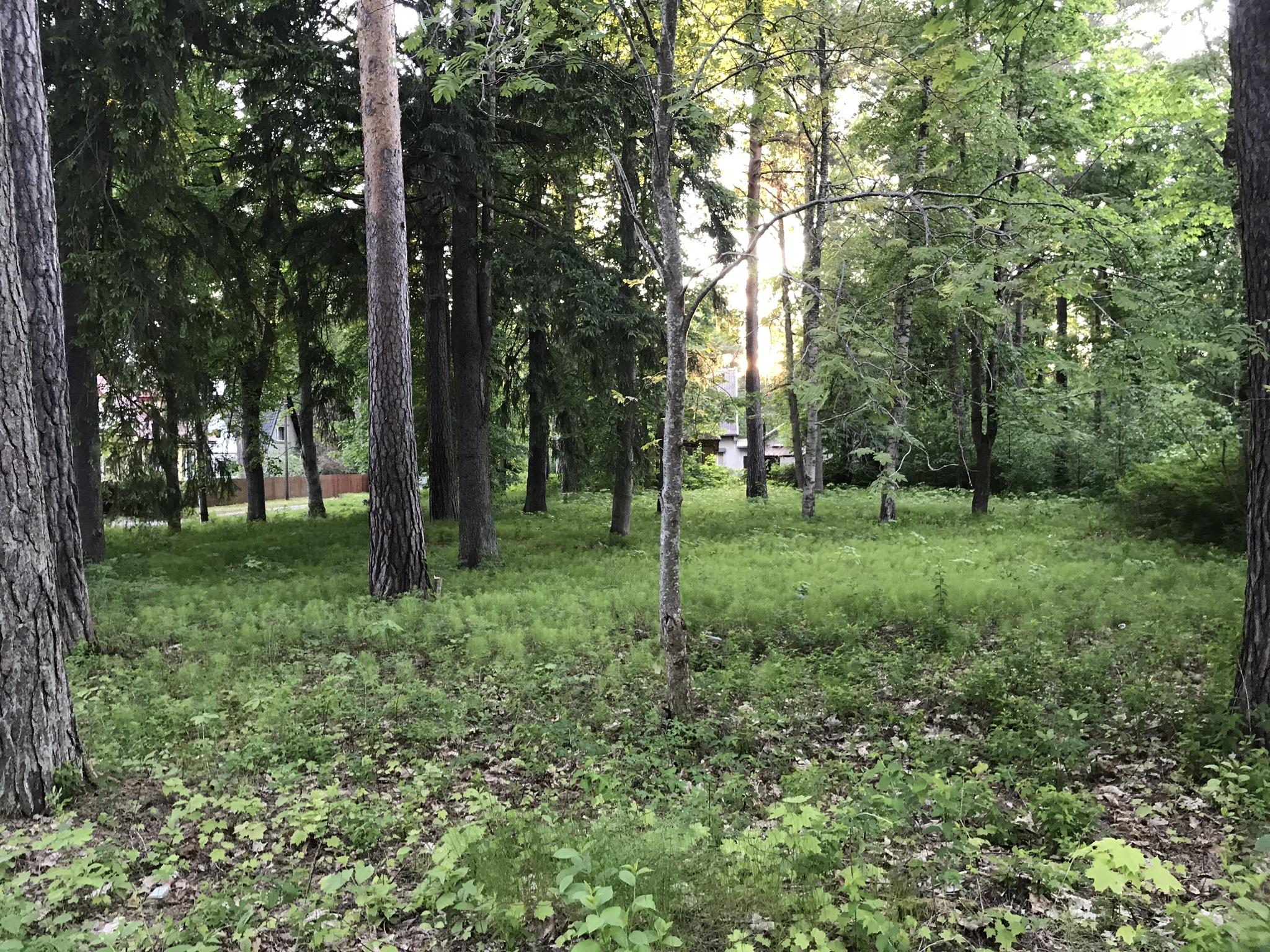 Raja 5, Narva-Jõesuu
