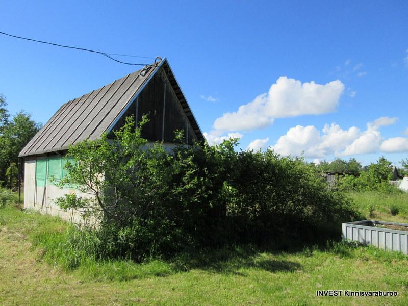 Anne 16, Narva