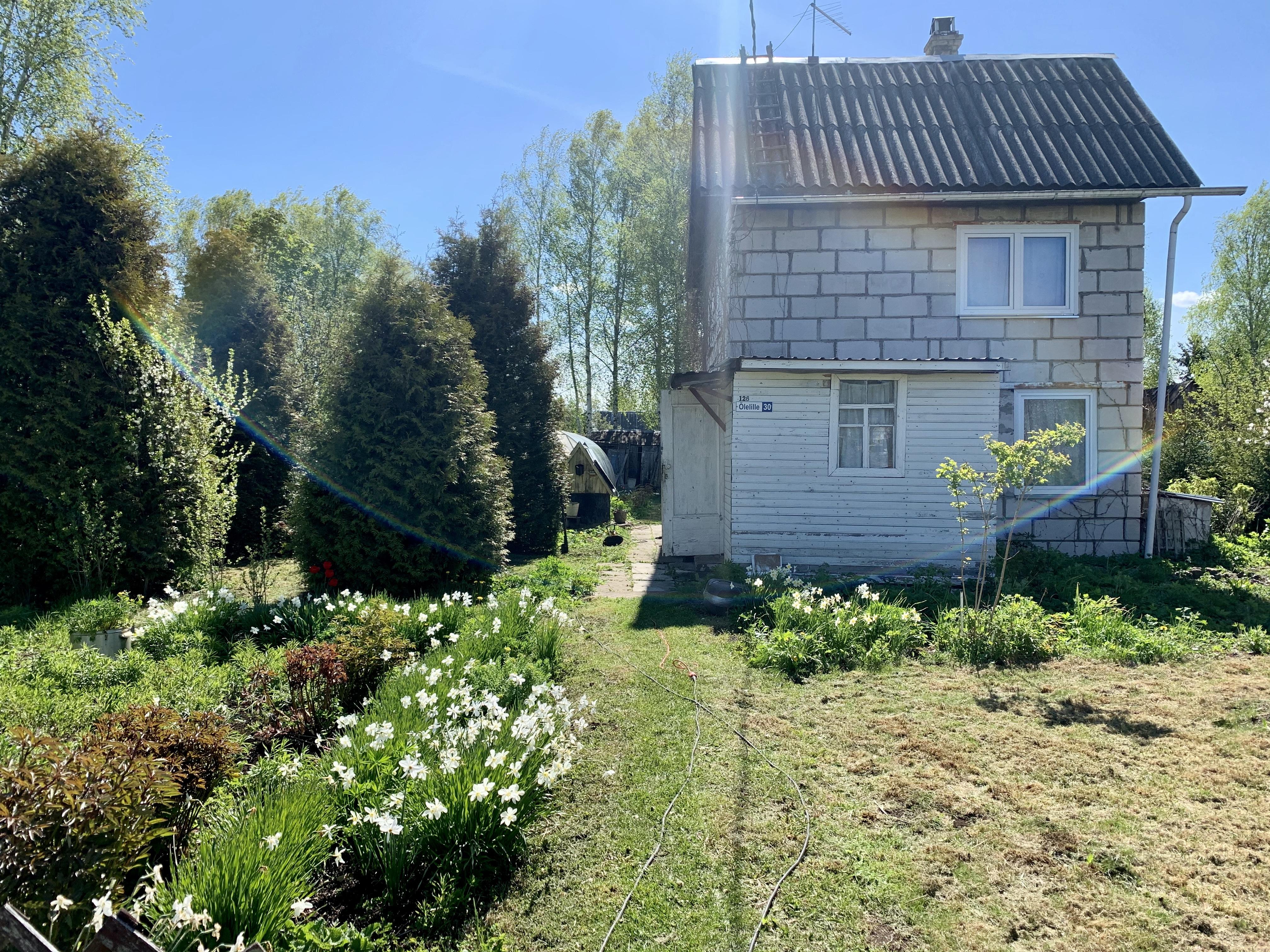 Õlelille 30, Narva