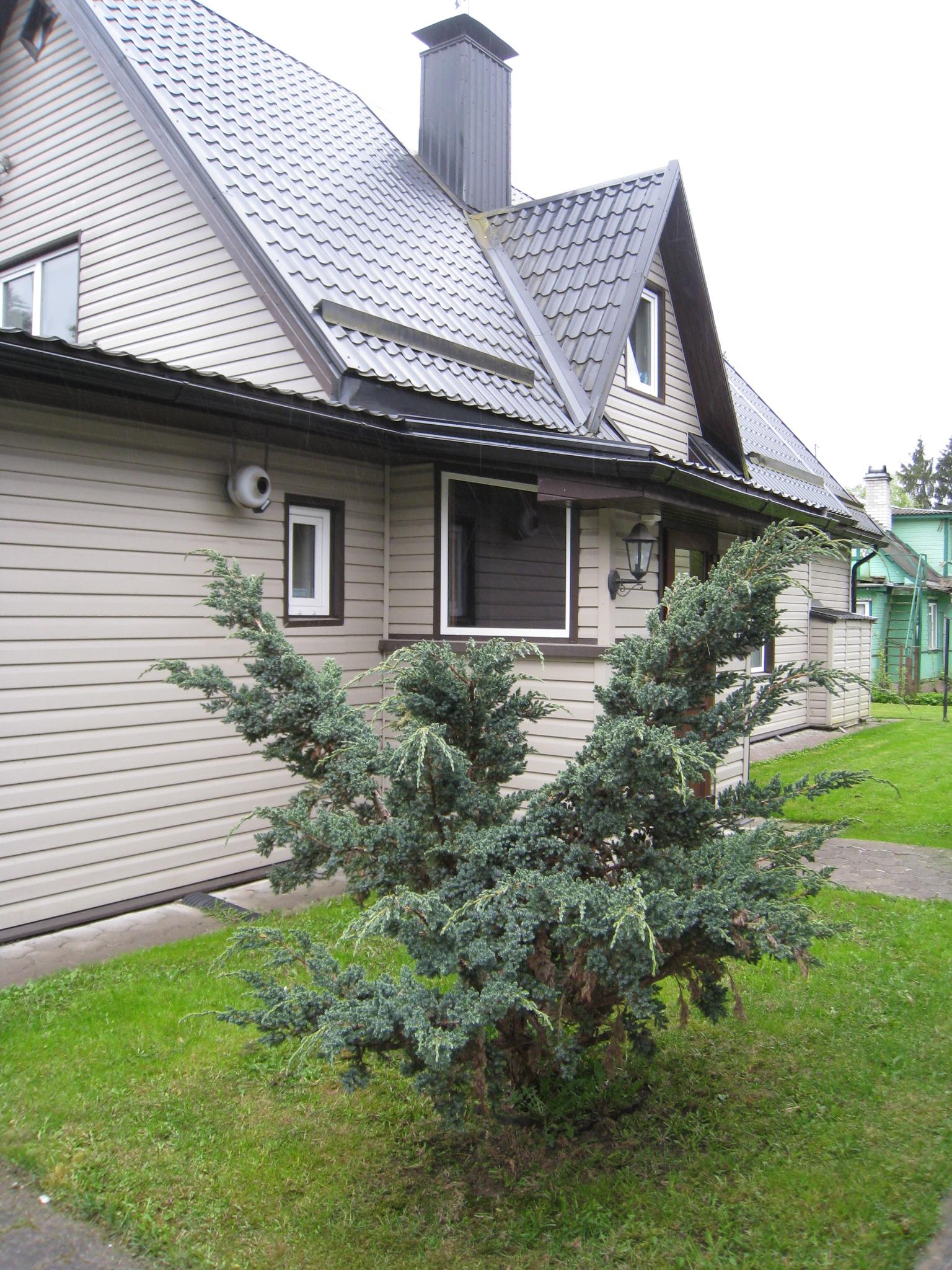 Lootuse 2, Narva-Jõesuu